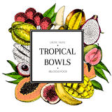 Vector hand drawn smoothie bowls poster. Exotic engraved fruits. Colored icons in square bodrer. Banana, mango, papaya Stock Image