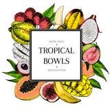 Vector hand drawn smoothie bowls poster. Exotic engraved fruits. Colored icons in square bodrer. Banana, mango, papaya. Pitaya, guava, lychee, fig, carambola Stock Image