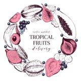 Vector hand drawn smoothie bowls poster. Exotic engraved fruits. Round border composition. Banana, mango, papaya, pitaya. Acai, lycgee, fig. Use for exotic Royalty Free Stock Image