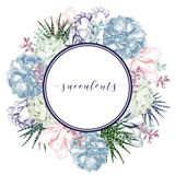Vector hand drawn succulent wreath. Colorfull engraved vintage style art. Round bodred composition. Botanical illustration. Use for wedding invitation, holiday Royalty Free Stock Image