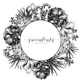 Vector hand drawn succulent wreath. Monocrome engraved vintage style art. Round bodred composition. Royalty Free Stock Image