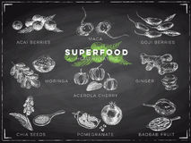 Vector hand drawn superfood Illustration. Royalty Free Stock Photography