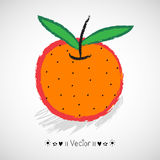 Vector hand drawn tangerine with green leaves, Illustration EPS10 Stock Photos