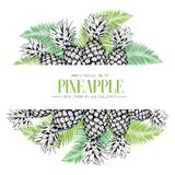 Vector hand drawn template illustration of pineapples isolated on palm tree leaves. Fresh tropical fruit engraved. Collection.Use for menu, store, market, party stock illustration