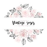 Vector hand drawn template illustration of roses isolated on white background. Vintage pastel flowers engraved Stock Photography
