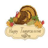 Vector hand drawn Thanksgiving background Royalty Free Stock Images