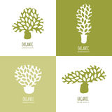 Vector hand drawn tree logo or emblem design elements. Set of abstract green tree icons. Stock Photography