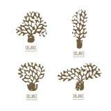 Vector hand drawn tree logo or emblem design elements. Stock Images