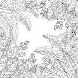Vector hand drawn tropical illustration with exotic leaves and flowers for adult coloring book. Freehand sketch for Stock Photography
