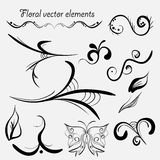 Vector hand drawn vector elements Stock Photos