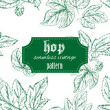 Vector hand drawn vintage seamless pattern with Stock Image