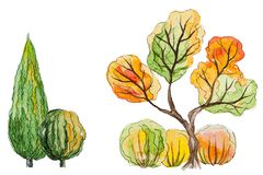 Vector autumn trees Royalty Free Stock Photo