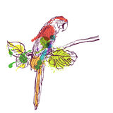 Vector hand drawn watercolor illustration of tropical ara parrot. Colorful parrot bird sitting on branch with green leaves. Isolated design element for fashion Royalty Free Stock Image