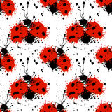 Vector hand drawn watercolor seamless pattern with ladybug. Stock Image