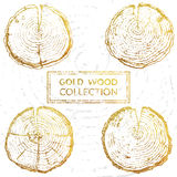 Vector hand drawn wood set isolated on white backdrop. Vector hand drawn wood round split set isolated on white backdrop. Vector set of hand drawn wood splits Stock Photos