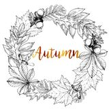 Vector hand drawn wreath of autumn leaves. Oak, maple, chestnut, acorn, seeds. Vintage engraved style. Use for Greeting card, discount template, store shoping stock illustration
