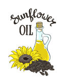 Vector hand drawn yellow sunflower, sunflower seeds and glass jug with oil. Vector flower and seeds Stock Photo