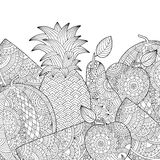 Vector Hand gezeichnete Ananas, Wassermelone, Apfelillustration für erwachsenes Malbuch Handzeichen für erwachsenes Anti Stockbild
