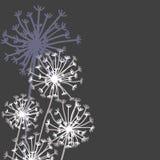 Vector Hand gezeichnete Elemente in der strengen Blumenart Lizenzfreie Stockfotos