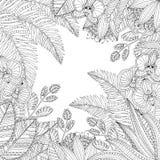 Vector Hand gezeichnete tropische Illustration mit exotischen Blättern und Blumen für erwachsenes Malbuch Handzeichen für Stockfotografie