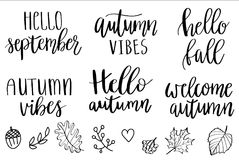 Hello autumn lettering. Vector hand lettering autumn phrases set, written in various brush styles with doodle berries, leaves, autumn elements and other Royalty Free Stock Images
