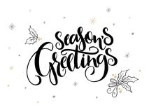 Vector hand lettering christmas greetings text - season`s greetings - with holly leaves and snowflakes.  Stock Photography