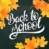 Vector hand lettering greeting text - back to school - with realistic maple leafs on blackboard background Stock Photography