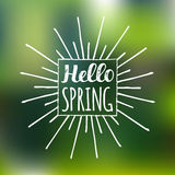 Vector hand lettering inspirational typography poster. Say hello to spring on blurred background. Royalty Free Stock Image