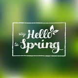 Vector hand lettering inspirational typography poster. Say hello to spring on blurred background. Vector hand lettering inspirational typography poster. Say Royalty Free Stock Image