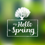 Vector hand lettering inspirational typography poster. Say hello to spring on blurred background. Stock Photography