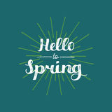 Vector hand lettering inspirational typography poster. Say hello to spring on ray pattern background. Royalty Free Stock Photo