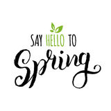 Vector hand lettering inspirational typography poster. Say hello to spring on white background. Stock Photo