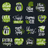 Vector hand lettering olive production signs.Sketched extra virgin oil illustrations set for farm,cosmetics produce etc. Royalty Free Stock Photography