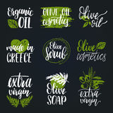 Vector hand lettering olive production signs.Sketched extra virgin oil illustrations set for farm,cosmetics produce etc. Stock Images