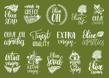 Vector hand lettering olive production signs.Sketched extra virgin oil illustrations set for farm,cosmetics produce etc. Royalty Free Stock Photo