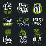Vector hand lettering olive production signs.Sketched extra virgin oil illustrations set for farm,cosmetics produce etc. Stock Image