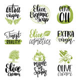 Vector hand lettering olive production signs.Sketched extra virgin oil illustrations set for farm,cosmetics produce etc. Vector hand lettering olive production stock illustration
