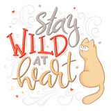 Vector hand lettering quote - stay wild at heart - with cat and decorative elements  Stock Photos