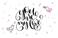Vector hand lettering valentine`s day greetings text - you are my love - with heart shapes and birds.  Stock Photos