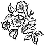 Vector hand-painted vintage flowers with curls isolated on white background. Vector hand-painted vintage flowers with curls vector illustration