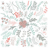Vector Hand Sketched Rustic Floral Doodle Branches Stock Photography