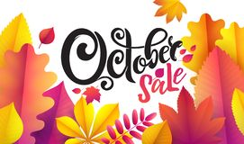 Vector hand written beautiful lettering text October Sale on leaf background. Decorated with bouquet autumn leaves. vector illustration