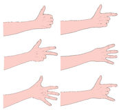 Vector hands Stock Photo