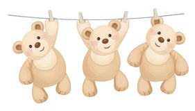 Vector hanging  bears. Vector hanging  teddy bears on clothing line with pegs Royalty Free Stock Images