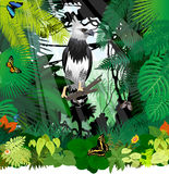 Vector Harpy Eagle and butterflies in Jungle Rainforest Royalty Free Stock Images