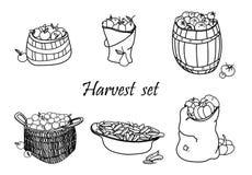 Vector harvest set Stock Image