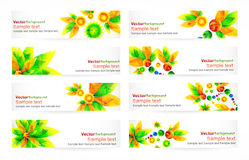 Vector  header with place for text Stock Photos