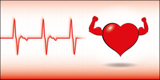Vector healthy heart. Vector illustration of healthy heart with cardiogram Royalty Free Stock Images