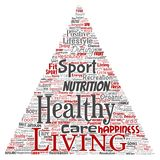 Vector healthy living positive nutrition sport triangle. Vector conceptual healthy living positive nutrition sport triangle arrow word cloud isolated background Stock Image