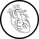 Vector heart icon Stock Photos